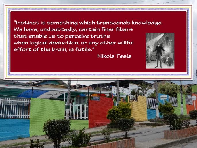 Nikola Tesla Instinct